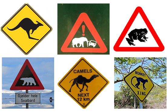 Existing animal signs.jpg